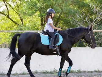 riding-child-and-horse-QPJKY9X-1 (1)